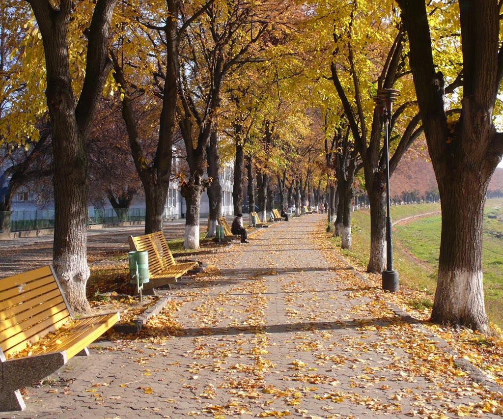 Ужгороду повернуть статус міста-саду