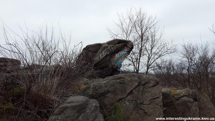 Каменная Жаба - достопримечательность Коростышева