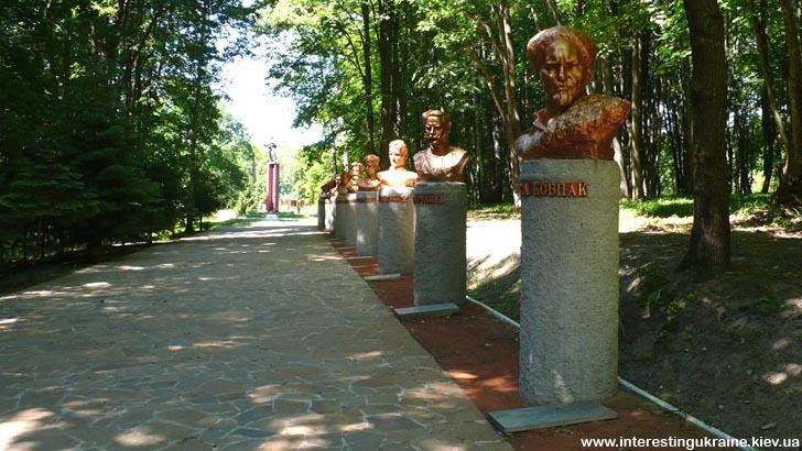 Спадщанский лес. Дорога в Музей партизанской славы