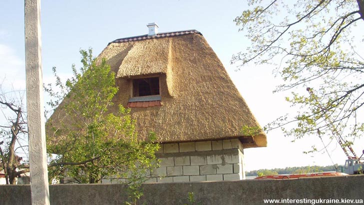 Енергозберігаючий дах з вилківського очерету