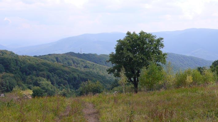 Вид с горы Плишка