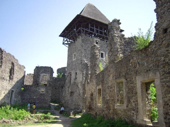 Замок в Невицком