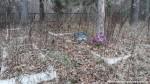 Кладбище партизан с. Мочалище Черниговской области