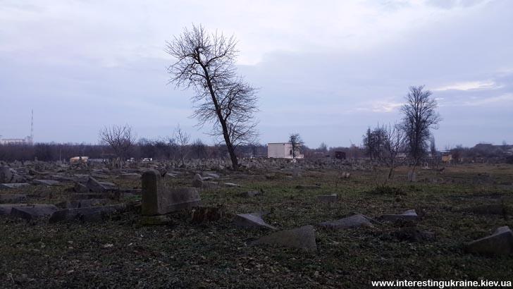 Киркут (еврейское кладбище) в Бердичеве