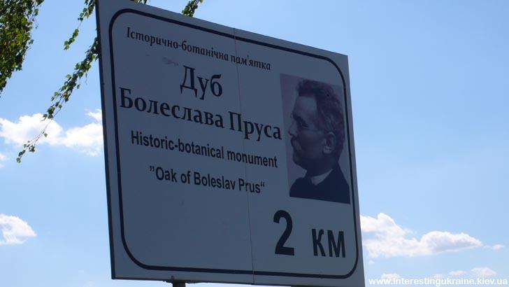 Указатель на дуб Болеслава Пруса в с. Машев Волынской области