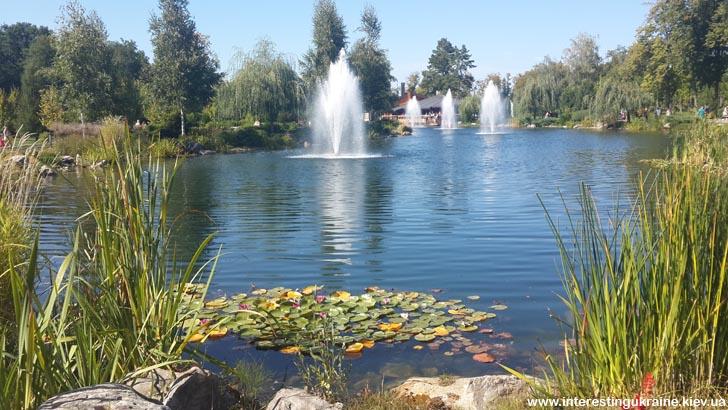 Живописные пруды Межгорья с фонтанами
