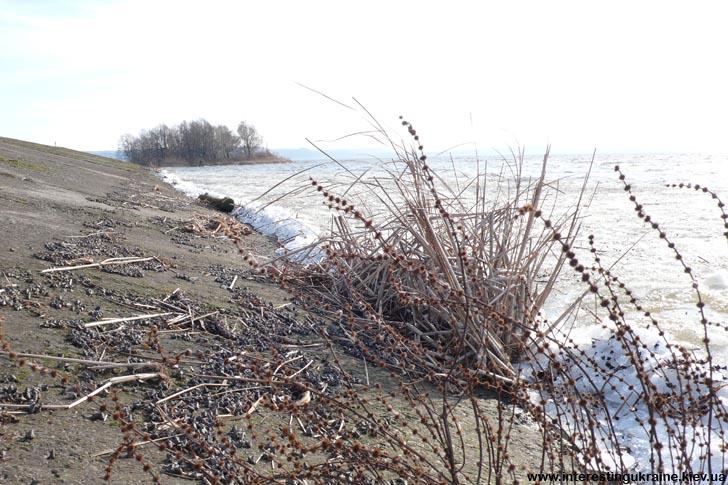 На берегу Каневского водохранилища в с. Кийлов