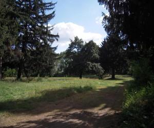 Достопримечательности в Кагарлыке. Парк